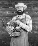 Verse organische groenten in rieten mand De hoed die van het landbouwersstro verse groenten voorstellen Landbouwer met inlands stock afbeelding