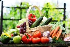 Verse organische groenten in rieten mand in de tuin Stock Foto's