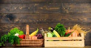 Verse organische groenten in rieten mand en houten doos Het concept van de dalingsoogst Groenten van tuin of landbouwbedrijf op h royalty-vrije stock foto