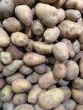 Verse organische jonge die aardappels op markt worden verkocht Stock Afbeeldingen