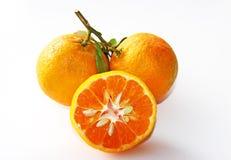 Verse Organische Mandarins die op wit wordt geïsoleerdt Royalty-vrije Stock Afbeeldingen