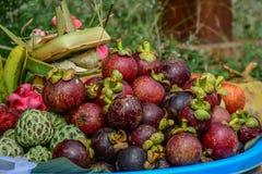 Verse organische mangostanvruchten bij markt stock foto