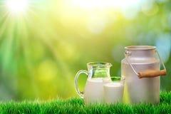Verse organische melk Stock Afbeelding