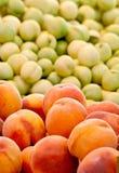 Verse Organische Perzik en Nectarines Royalty-vrije Stock Foto
