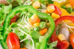 Verse organische plantaardige salade Stock Foto's