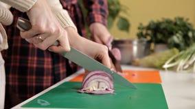 Verse organische rode uien op houten Besnoeiing in de helft, plak en ui stock videobeelden