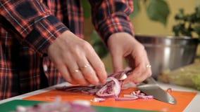 Verse organische rode uien op houten Besnoeiing in de helft, plak en ui stock video