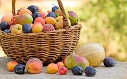 Verse organische vruchten (seizoengebonden fruit) Royalty-vrije Stock Foto's