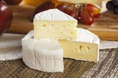 Verse Organische Witte Brie Cheese royalty-vrije stock afbeelding