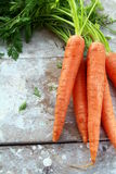 Verse organische wortel met groene bladeren stock foto's