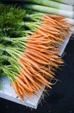 Verse organische wortelen stock afbeelding