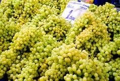 Verse Organische Zaadloze Groene Druiven Royalty-vrije Stock Afbeelding