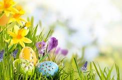 Verse Pasen-achtergrond in een de lenteweide Royalty-vrije Stock Foto's