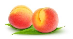 Verse perziken Stock Afbeelding