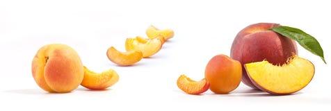 Verse perziken en abrikoos Stock Afbeeldingen