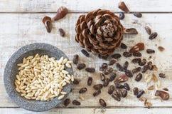 Verse pijnboomnoten en pinecone Royalty-vrije Stock Foto's