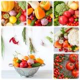 Verse product-groenten vegetables collage stock afbeelding