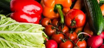 Verse product-groenten vegetables Kleurrijke groentenachtergrond Gezonde vegeta royalty-vrije stock fotografie