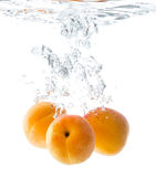 Verse rijpe abrikoos Royalty-vrije Stock Afbeeldingen