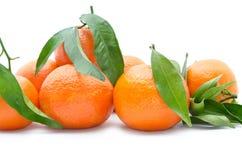 Verse, rijpe citrusvrucht, die op witte achtergrond wordt geïsoleerd Stock Afbeeldingen