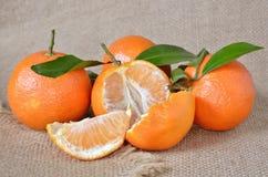 Verse, rijpe citrusvrucht, op het ruwe ontslaan Royalty-vrije Stock Afbeelding