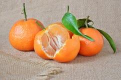 Verse, rijpe citrusvrucht, op het ruwe ontslaan Stock Foto's