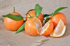 Verse, rijpe citrusvrucht, op het ruwe ontslaan Stock Afbeeldingen