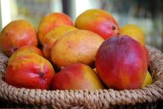 Verse rijpe mango's Stock Afbeeldingen
