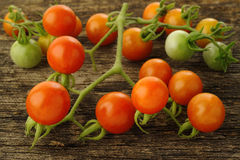 Verse rijpe tomaten Royalty-vrije Stock Afbeeldingen