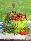 Verse rijpe tomaten, olijfoliefles, peperschudbeker en basilicum Royalty-vrije Stock Afbeeldingen