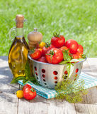 Verse rijpe tomaten, olijfoliefles, peperschudbeker en kruiden Stock Fotografie