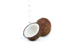 Verse rijpe tropische die kokosnoten met water op wit wordt geïsoleerd Royalty-vrije Stock Afbeeldingen