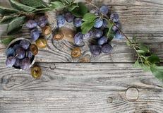 Verse rijpe violette smakelijke sappige pruimen royalty-vrije stock afbeeldingen