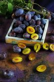 Verse rijpe violette smakelijke sappige pruimen stock foto's