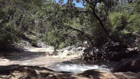 Verse rivierstroom stock videobeelden