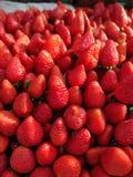 Verse rode aardbeien Stock Afbeelding