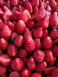 Verse rode aardbeien Royalty-vrije Stock Fotografie