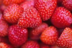 Verse rode aardbeienachtergrond Stock Afbeelding