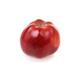 Verse rode appel Stock Afbeelding