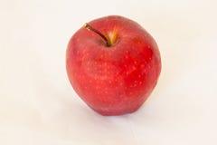 Verse rode appel die op wit wordt geïsoleerd Royalty-vrije Stock Foto