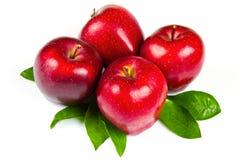 Verse rode appelen met bladeren Stock Fotografie