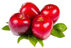 Verse rode appelen met bladeren Royalty-vrije Stock Afbeelding