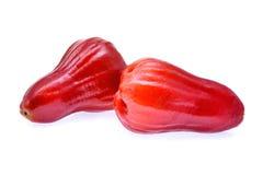 Verse rode die djamboevruchten op witte achtergrond worden geïsoleerd Royalty-vrije Stock Fotografie
