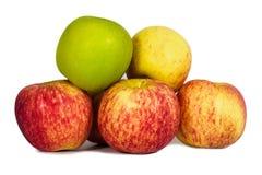 Verse rode en groene appelen Stock Afbeeldingen