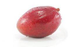 Verse Rode Mango Stock Foto