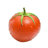 Verse Rode Natte Tomaat Royalty-vrije Stock Foto's