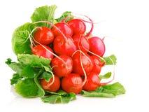 Verse rode radijsgroenten met groene bladeren royalty-vrije stock foto's