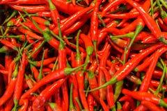 Verse rode Spaanse peperpeper in de markt royalty-vrije stock afbeeldingen
