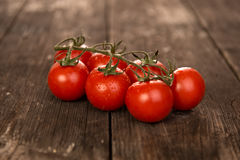 Verse rode tomaten Royalty-vrije Stock Fotografie