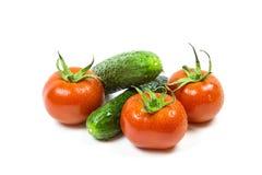 Verse rode tomaten en komkommers stock afbeeldingen